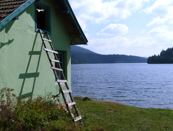 My accommodation overlooking the lake
